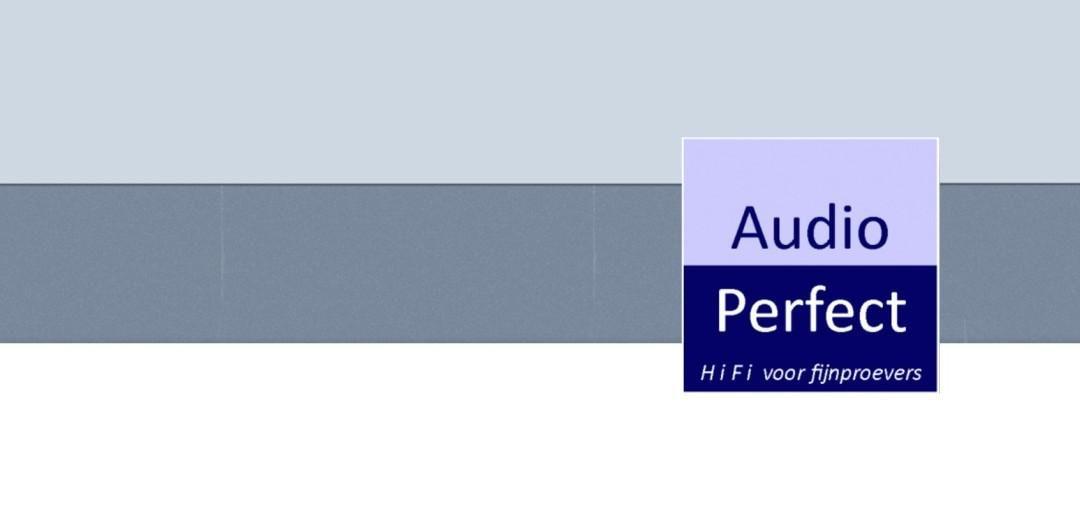 Audio Perfect Logo